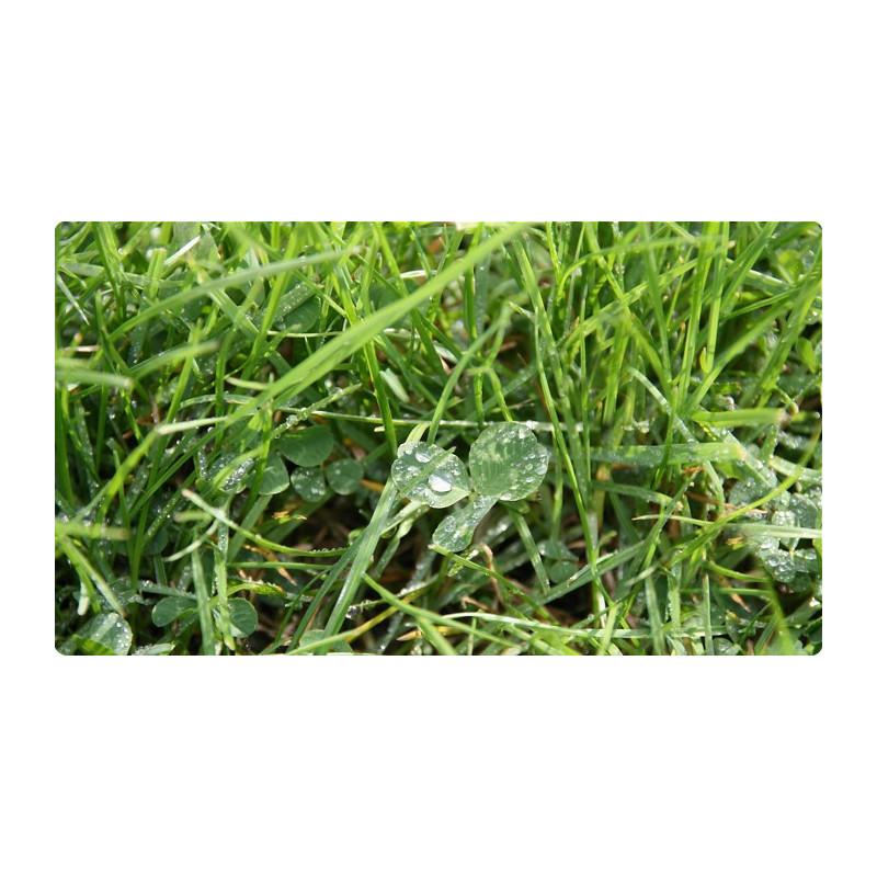 Pokrywa szpuli podkaszarki Gardena (520 43 59-01)