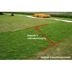 Siewnik ogrodowy rotacyjny Greenmill 3.0l