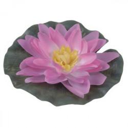 Kruk latający