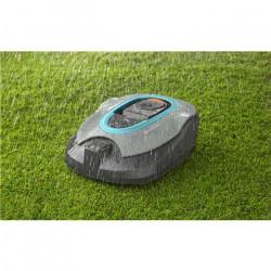 Żaba duża orientalna