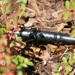 Greenmill Aquasystem Zestaw przyłączy linii P1 z reduktorem 1.1bar GB7069