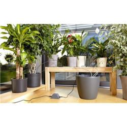 Gardena MicroDripSystem rura rozdzielcza 316cal 50 m 134820 GA1348